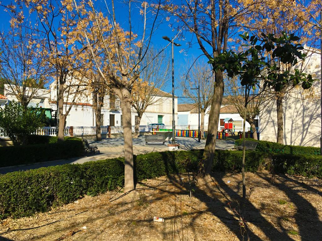 Plaza Canasteros de Casanueva