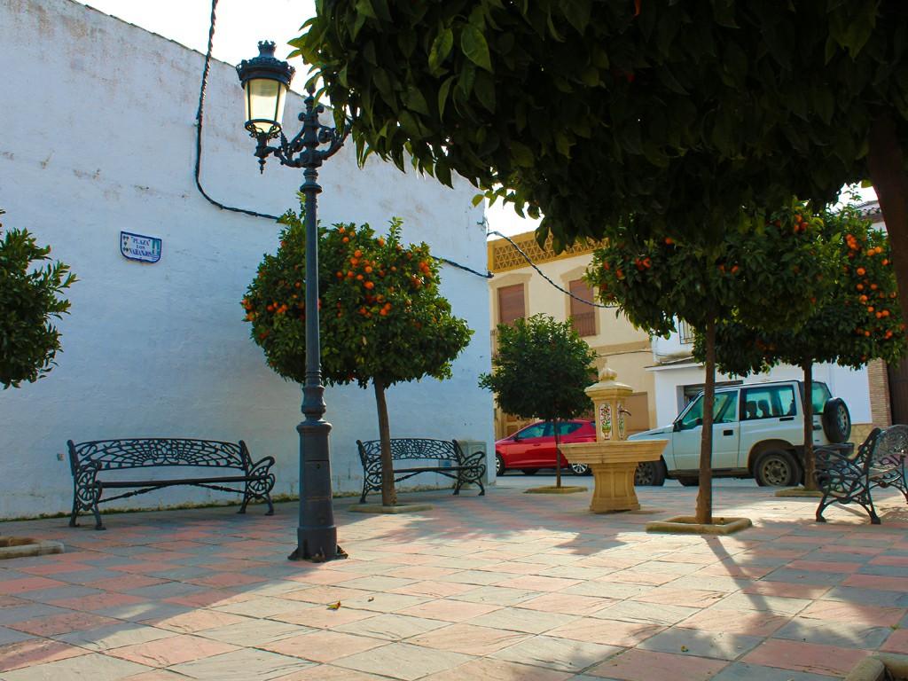 Plaza de Trasmulas