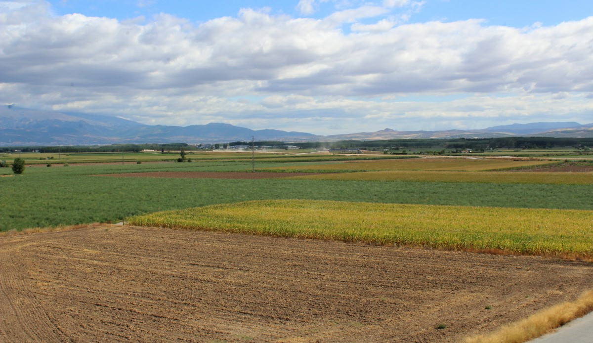 La Vega vista desde Pinos Puente